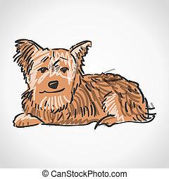 sitzen, terrier, yorkshire
