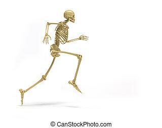 skelett, rennender