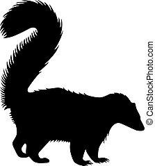 Skunk.