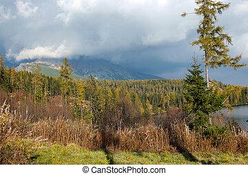slowakei, tatra, pleso, schöne , -, see, szene, natur, berg, strbske