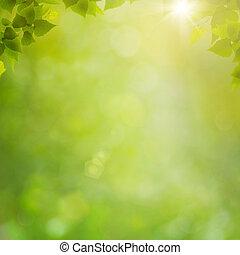 Sommer im Wald, abstrakter natürlicher Hintergrund mit frischem Futter und Borkeh