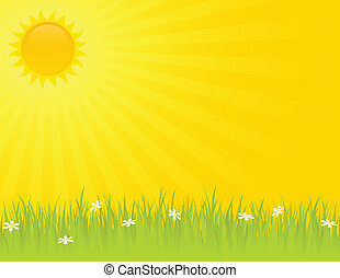 sommer, sonniger tag