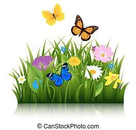 Sommerblumen mit Schmetterling.
