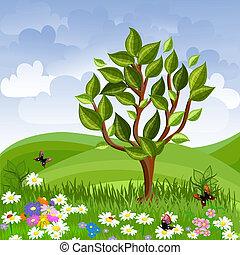 Sommerlandschaft mit einem jungen Baum