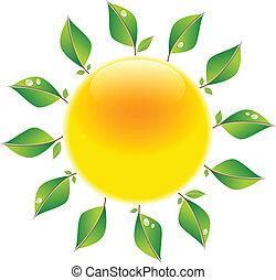 Sonne mit Blättern
