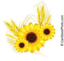 Sonnenblumen und Weizen Hintergrund