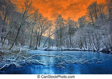 Spektakulärer oranger Sonnenuntergang über Winterwald.
