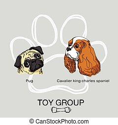 spielzeug, gruppe, hund, pack1