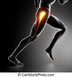 Sport-Hippverletzungs-Konzept