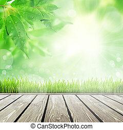 Spring Natur Hintergrund mit Gras.