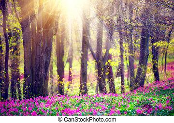 Spring Park mit grünem Gras, blühende wilde Blumen und Bäume. Wunderschöne Naturlandschaft