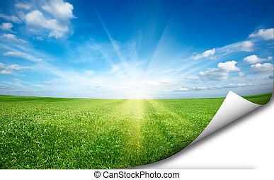 Ssun und grüner Grüngrasfeld blauer Himmelaufkleber