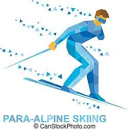 steigung, erwerbsunfähigkeit, sportler, unten, skiing., ski, para-alpine, physisch
