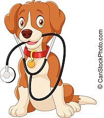 stethoskop, hund, sitzen, reizend