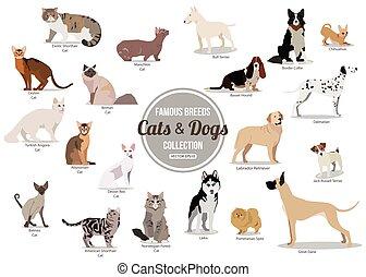 stil, oder, hunde ausführen, populär, sitzen, reizend, freigestellt, satz, icons., breeds., design, karikatur, dogs., wohnung
