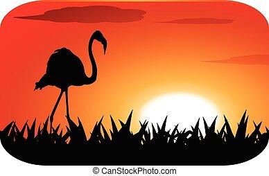 Stork mit Sonnenuntergang.