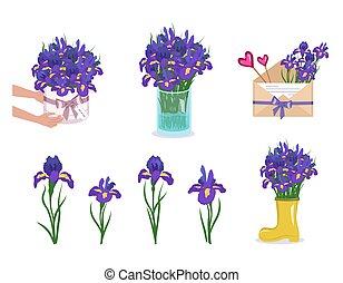 sträuße, auslieferung, runder , kasten, blumenvase, envelope., blumen, fruehjahr, decorations., iris, satz, sommer