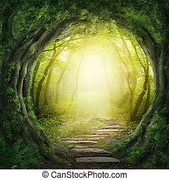 Straße im dunklen Wald