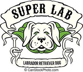 Super Labrador Retriever Hund mit grünem Umhang.