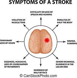 Symptome eines Schlaganfalls. Weltstreichtag. Infographics. Vector Illustration auf isoliertem Hintergrund.