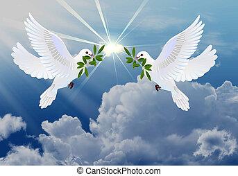 Täubchen des Friedens