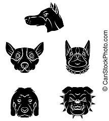 t�towierung, symbol, kopf, hund