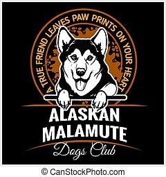 t-shirt, alaskisch, -, abbildung, malamute, vektor, schablone, logo, abzeichen