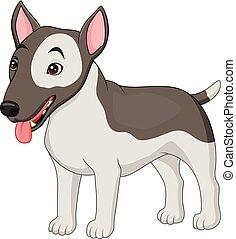terrier, hund, rasse, stier