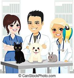 Tierärztinische Haustiere.