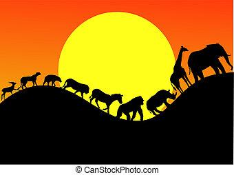 Tier afrika Silhouette