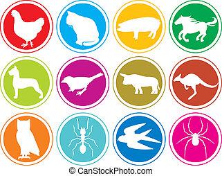 Tier-Ikonen-Knöpfe