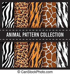 tier, seamless, zebra druck, muster, hintergrund, giraffe, leopard, afrikanisch, tiger