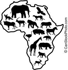 Tierafrika