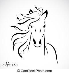 Tierbild eines Pferdes