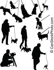 tiere, ausstellung, hunden