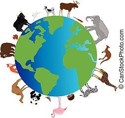 Tiere Erde.