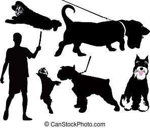 tiere, hund, freigestellt