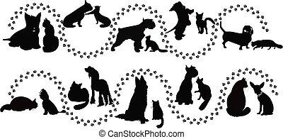 Tiere Katzen und Hunde.