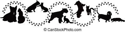 Tiere verfolgen Katzen und Hunde.