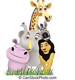 Tierfilm