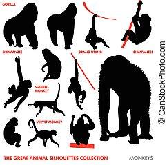 Tiersammlung - Affen.