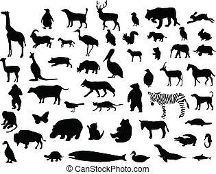 Tiersammlung