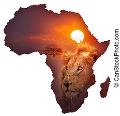 tierwelt, landkarte, afrikanisch
