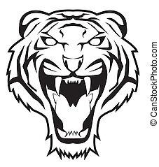 tiger, gesicht