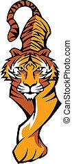 Tiger-Maskottchen-Körper streift den Vektor