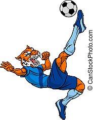 tiger, spieler, sport, maskottchen, fußball, tier, fußball