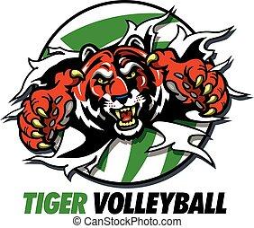 Tiger Volleyball.