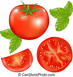 Tomate mit Tomaten- und Basilikumblättern