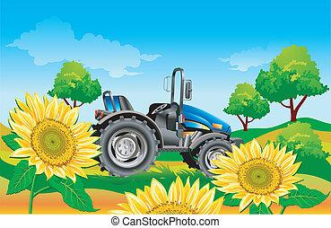 Traktor auf dem Feld.
