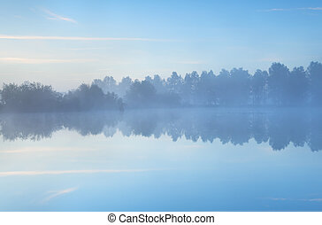 Tranquil Misty Morgen am See.